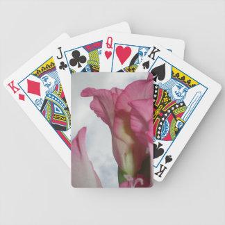Como el gladiolo rosado cristalino baraja de cartas bicycle