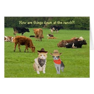 ¡Cómo están las cosas abajo en el rancho?! Tarjeta De Felicitación