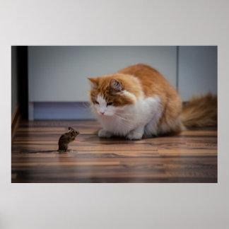 Como gato y ratón póster
