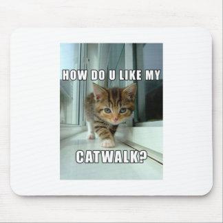 Cómo haga usted tiene gusto de mi paseo de gato tapete de raton