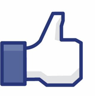 Como la mano - pulgares del FB para arriba Fotoescultura Vertical