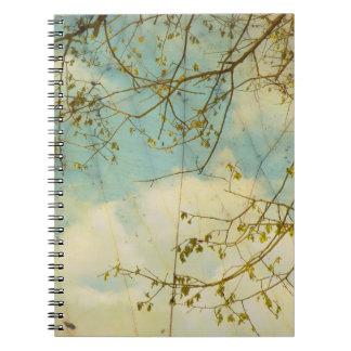 Como las nubes flotan por el cuaderno