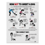 """Cómo no saludar un perro (11"""" x 14"""") Niño-Amistoso Poster"""