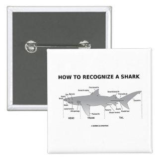Cómo reconocer un tiburón (humor de la biología) pin cuadrado