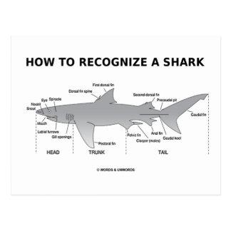 Cómo reconocer un tiburón (humor de la biología) postales