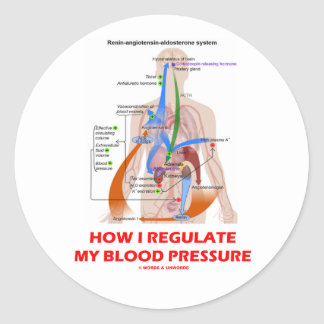 Cómo regulo mi presión arterial anatómica etiquetas redondas