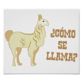 Como Se Llama?  What is your name? Poster