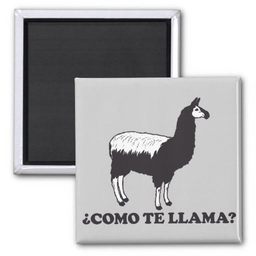 Como Te Llama Magnets