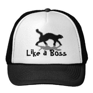 como un gorra divertido del gato negro del jefe