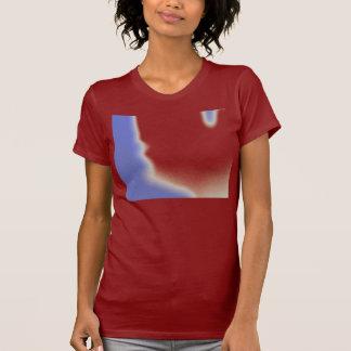 Cómo usted me caracterizaría 2 camisetas