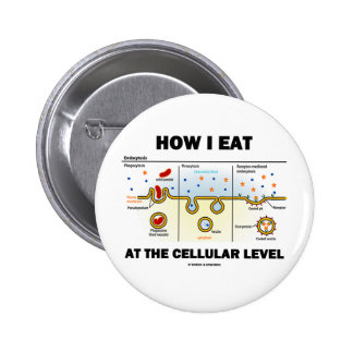 Cómo yo como en el nivel celular (Endocytosis) Pin