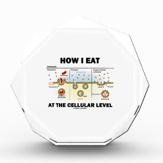 Cómo yo como en el nivel celular Endocytosis