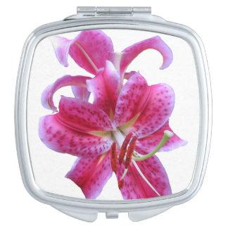 Compact Mirror--Stargazers Vanity Mirror