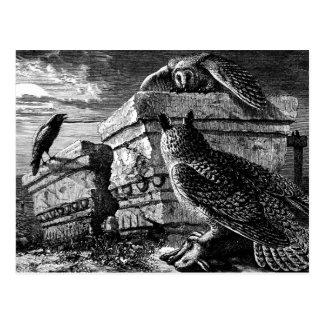 Compañero a la postal de los búhos