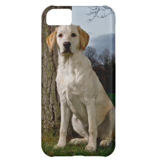 Compañero Barely There del caso del iPhone 5 de La Carcasa iPhone 5C