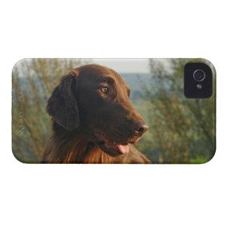 Compañero de encargo del caso del iphone 4 del per Case-Mate iPhone 4 protector
