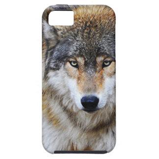 Compañero del caso del iPhone 5 del lobo gris Funda Para iPhone SE/5/5s