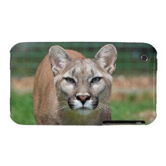 Compañero hermoso del caso del iphone 3G de la iPhone 3 Case-Mate Fundas