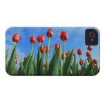 Compañero hermoso del caso del iphone 4 de las flo Case-Mate iPhone 4 protectores