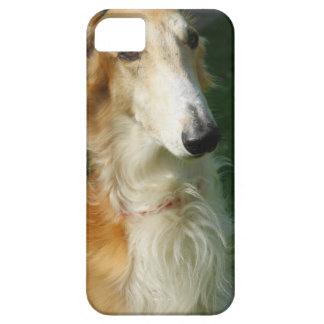 Compañero hermoso del caso del iphone 5 de la foto funda para iPhone SE/5/5s