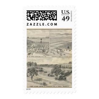 Compañía de la madera de construcción del arbolado sello