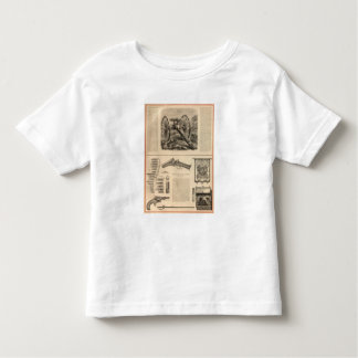Compañía Schuyler, Hartley y Graham del arma de Camisas
