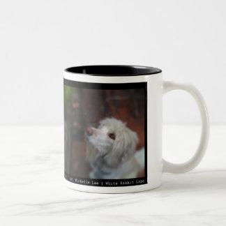 Companion [2] Two-Tone coffee mug