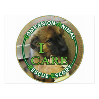 Companion Animal Rescue Escort (Transporter) Postcard