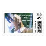 CompanionAnimal Massage & Bodywork Stamp