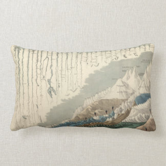 Comparative Geography 1854 Throw Pillow