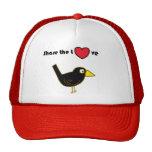 Comparta el gorra del amor