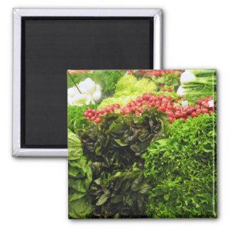 compartimiento de la verdura frondosa verde imán cuadrado
