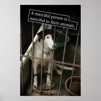 Compasivo al poster de los animales