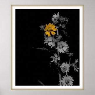 Compass Flower Print print