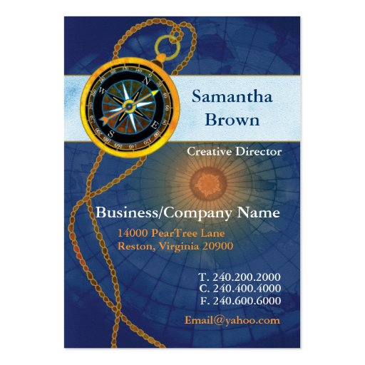 Compass Professional Business Cards