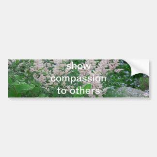 Compassion Car Bumper Sticker