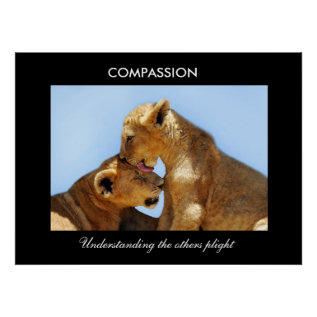 Compassion With Orphaned Cubs Poster at Zazzle