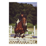 Competencia de salto del caballo - impresiones