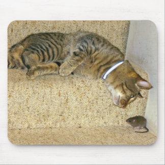 Competencia el mirar fijamente del gato y del rató alfombrilla de ratones