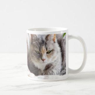 Competencia el mirar fijamente taza de café