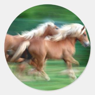 Competir con al pegatina de los caballos del