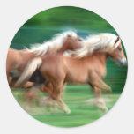 Competir con al pegatina de los caballos del Palom