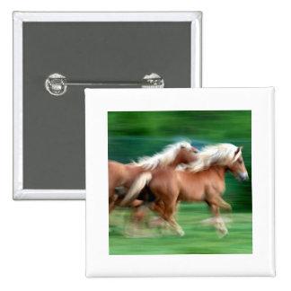 Competir con el botón cuadrado de los caballos del pin cuadrado