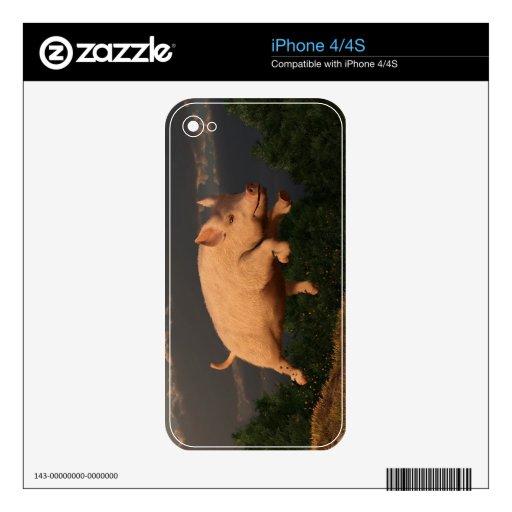 Competir con el cerdo skins para iPhone 4