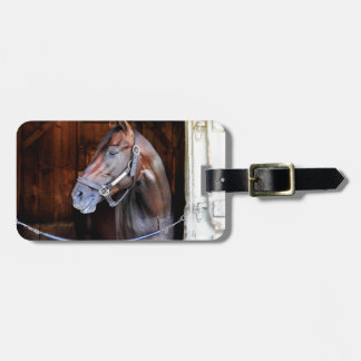 Competitive Edge Bag Tag
