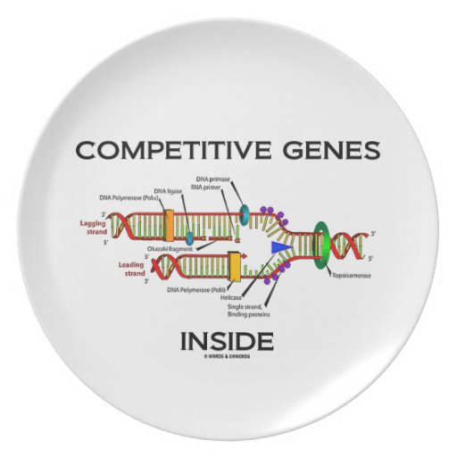 Competitive Genes Inside (DNA Replication) Party Plates