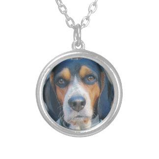 Compinche del beagle collar plateado