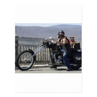 Compinches de la motocicleta postales