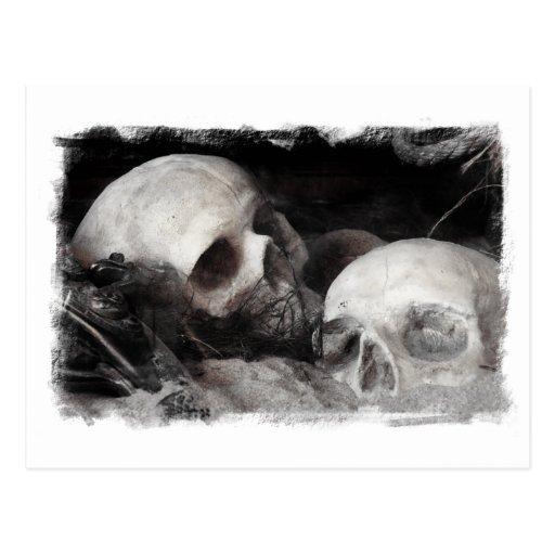 Compinches del cráneo tarjetas postales