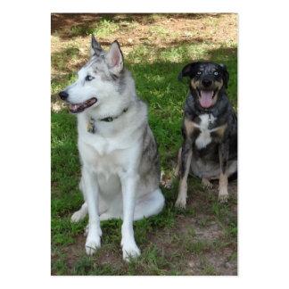 Compinches del perro de Catahoula y de Ausky Tarjetas De Negocios